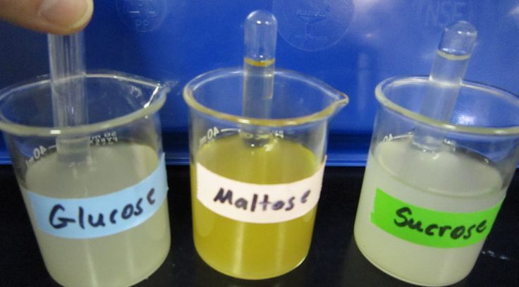 Science Stuff Blog: Lab: The Use of Glucose in Cellular Respiration
