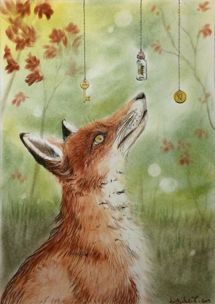 """Choices, choices, choices"": by Lisbeth Thygesen. #fox  http://lisbeththygesen.mono.net/blandede_media Contact: lisbeth_tlive.dk"