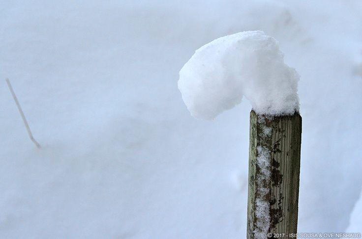 #Winter #Snow #SousaNeshaug (C) Sousa & Neshaug Photography - http://sousaneshaug.com