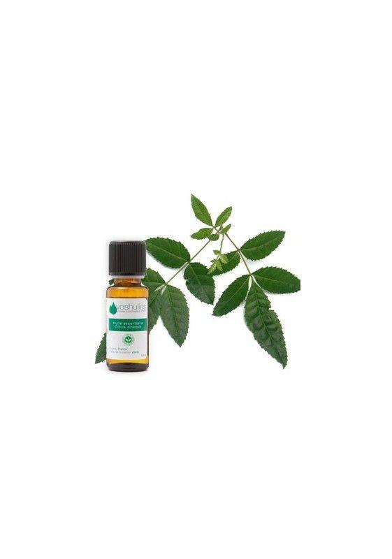 L'huile essentielle d'Encens est appelée aussi Oliban. En diffusion, son parfum (oriental) parfume la maison, aide à la concentration, redonne tonus et vitalité, raffermit la peau...