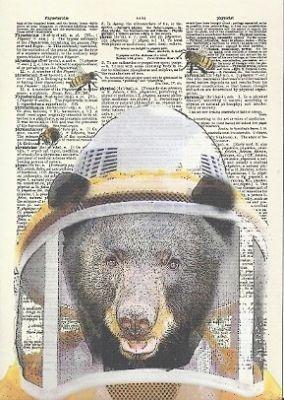 matt dinniman | beekeeper bear matt dinniman 2011 artpress postcard