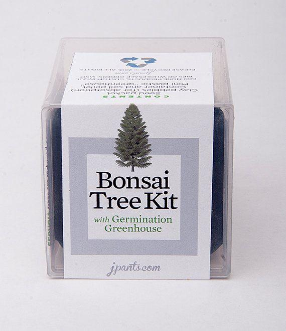 Giant Sequoia Bonsai Tree Kit With Germination Greenhouse -- Perfect for Your Terrarium or Garden -- Sequoiadendron giganteum on Etsy, $5.00
