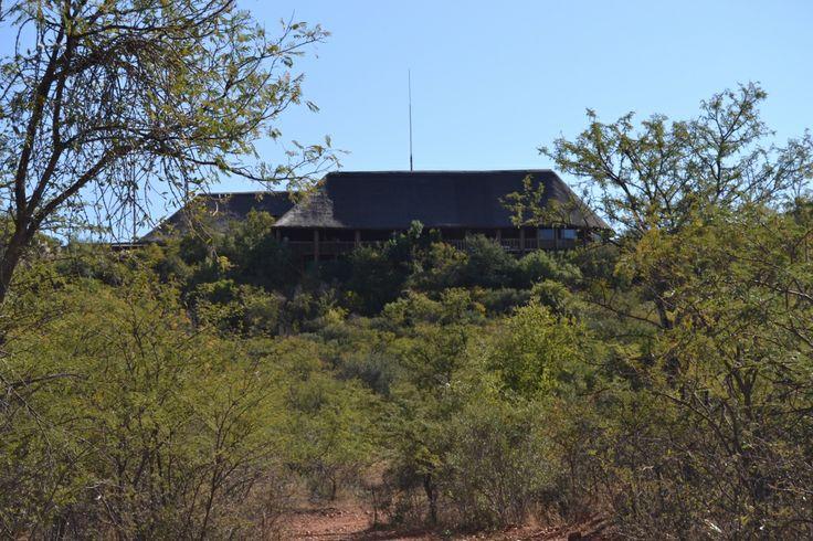 Thaba Tshewe #Game #Lodge wwwthabatshwene.co.za