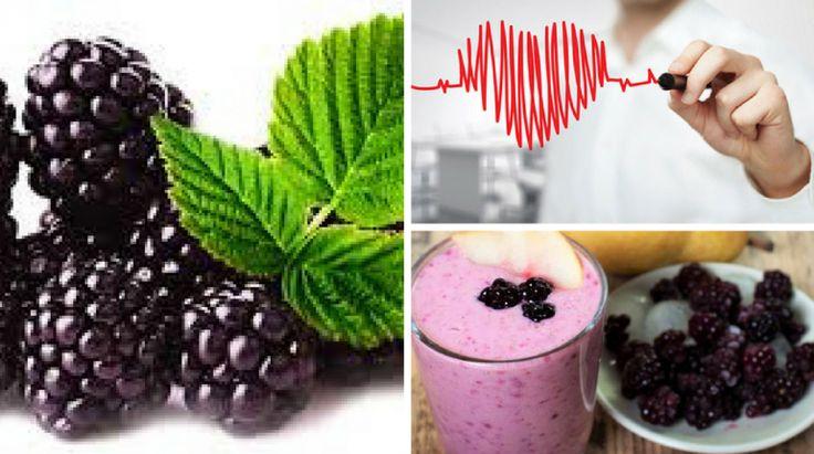 6+ Benefícios da Amora para a Saúde