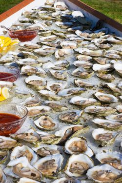Oysters!Food Seafood, Oysters Fest, Oysters Bar, Ma Oysters, Oysters Oh, Yummy, Things, Raw Oysters, Fabulous Eating
