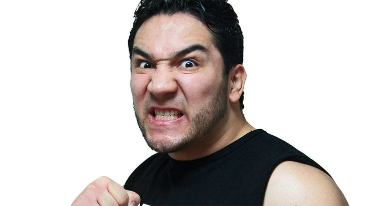 Perro Aguayo Jr. dies after wrestling match with Rey Mysterio and TNA's Manik - http://lincolnreport.com/archives/616851