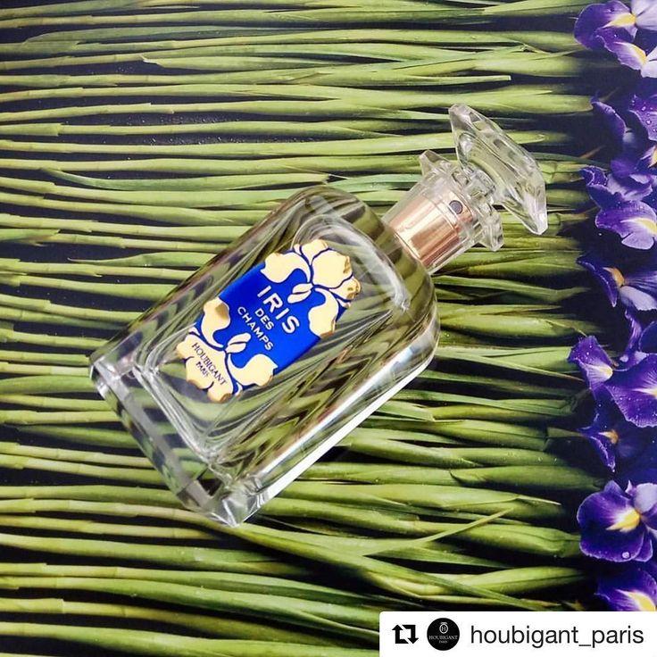 #Repost @houbigant_paris (@get_repost) ・・・ Iris Des Champs |  @aromablog #Houbigant #HoubigantParis #rosinaperfumey #giannitsopoulou6 #glyfada #athens #greece #shoponline : www.rosinaperfumery.com