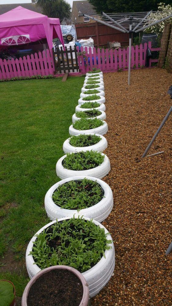 Tyre planter edging                                                       …