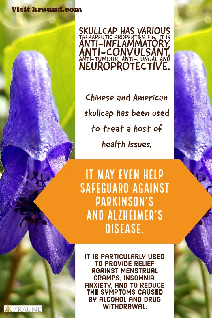 European and native American herbalist have used skullcap