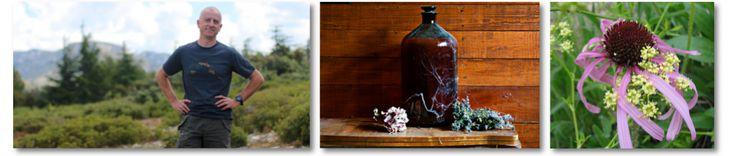 Eczéma atopique : plantes médicinales et nutrition « AltheaProvence