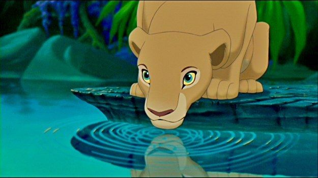 I got Nala! Which Lion King Character Are You? You're intelligent, stubborn, and stand up for what you believe in. You are ambitious and independent, doing what you need to do to succeed. Others respect and admire you.