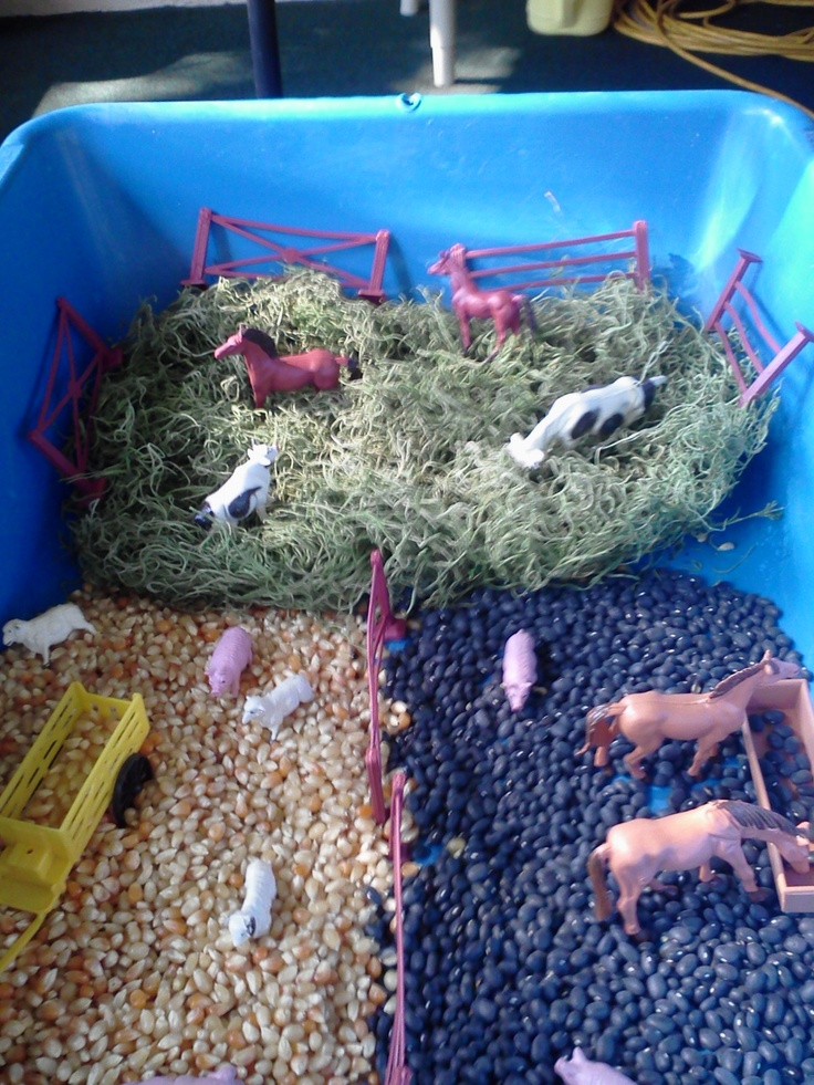 We will call this the farm sanctuary sensory bin. It's where abused farm animals go when they're saved by kind vegans like us.