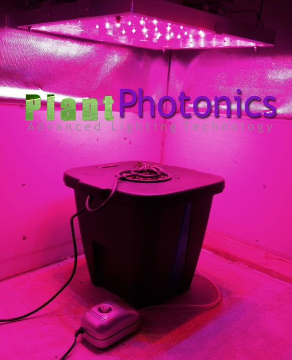 49 best images about best high power led grow lights on the market on. Black Bedroom Furniture Sets. Home Design Ideas