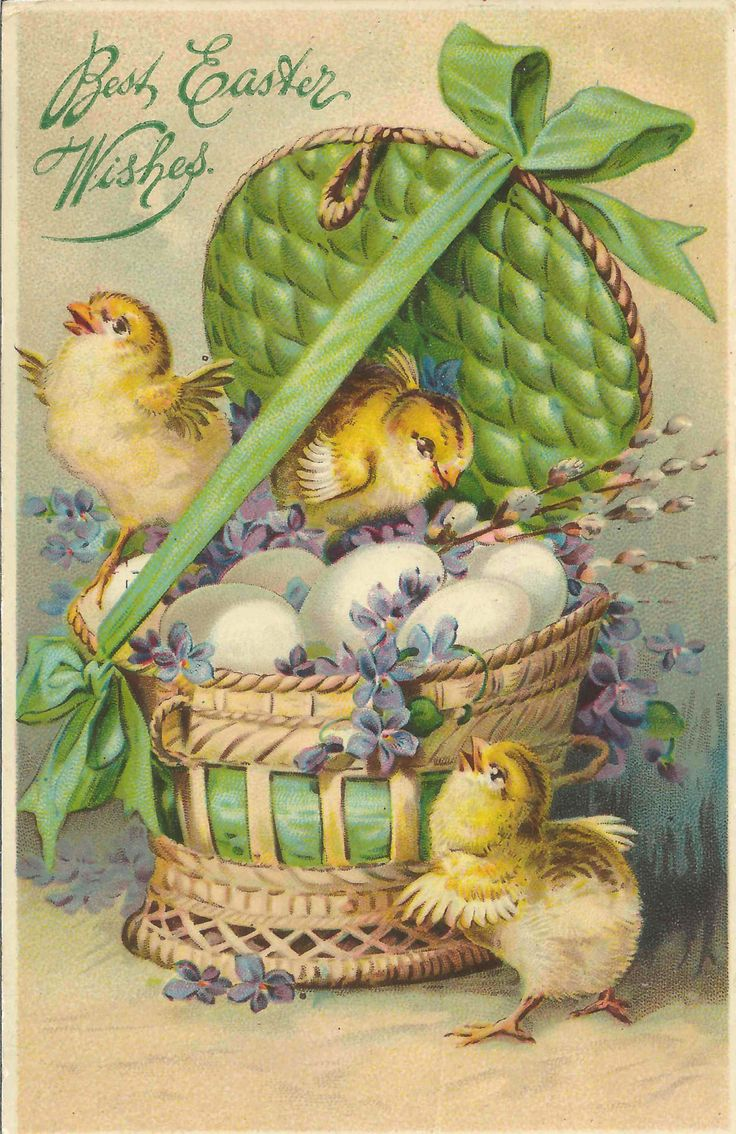 Antique 1907-1915 Best Easter Wishes Postcard Green Easter Basket Full Fluffy Chicks Enhanced Gel Gloss Finish Adds Extra Brilliance by StructureandSpice on Etsy