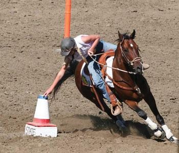 Speed Ball is a cone set 100' from the timing line. You enter with a golf ball, run up, and drop it in the cone. The ball has to go in the cone for your run to count.  Santa Ynez Valley Journal | HOOF BEATS