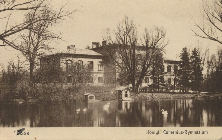 Lissa, Posen: Kgl. Comenius-Gymnasium [2]