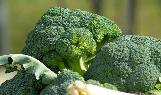 Päť dôvodov, prečo jesť brokolicu