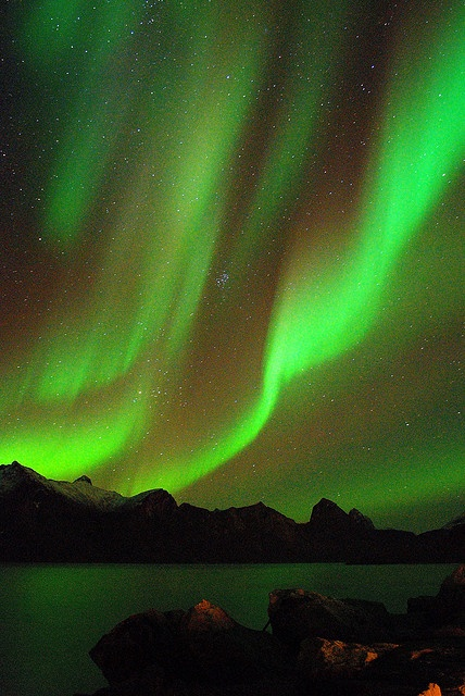 Aurora Borealis ~ Northern Lights... I remember seeing them once when we lived in Washington. They looked green and yellow like this. So beautiful.
