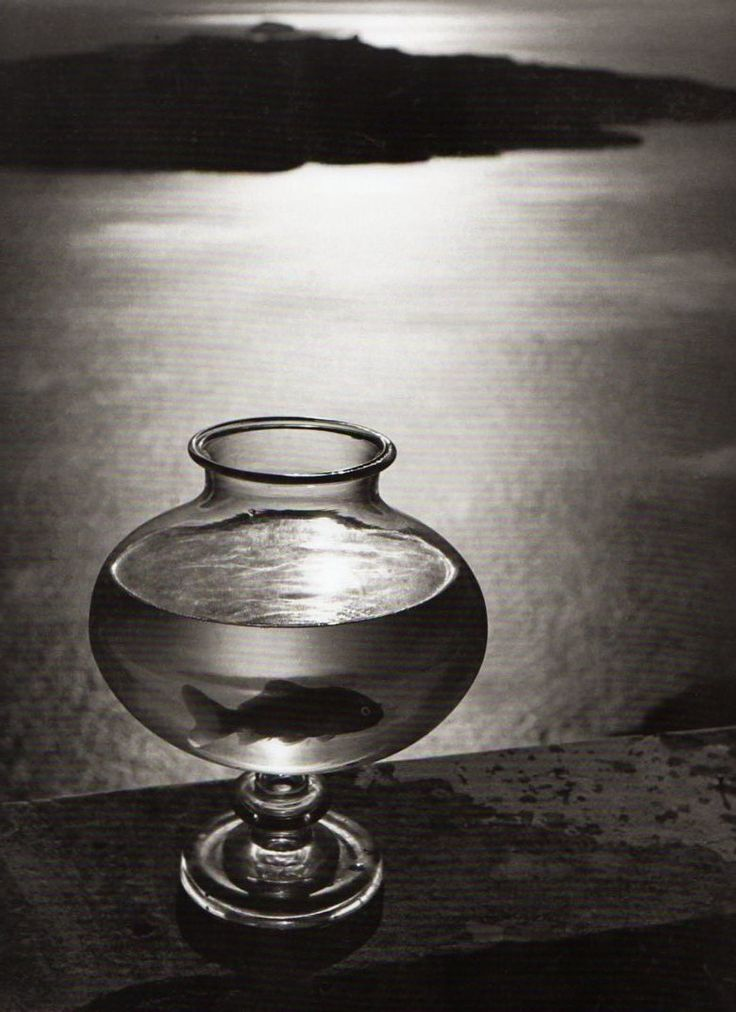 Goldfish bowl santorini 1937 by herbert list