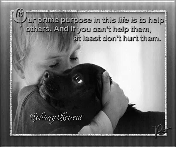 Yes...this goes for animals AND humans. In the end, only kindness matters.