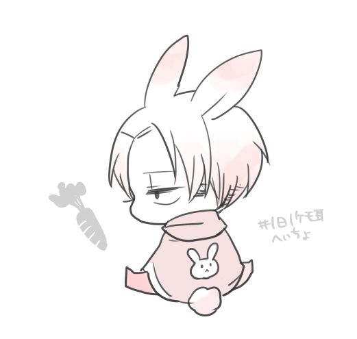 Adorable rabbit Levi