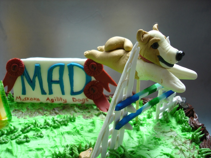 agility dogs cake Celebration Cakes Pinterest Dogs ...