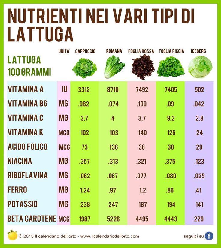 Nutrienti nei vari tipi di lattuga
