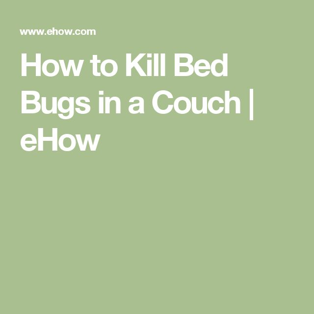Best 25 killing bed bugs ideas on pinterest bed bug remedies what kills bed bugs and bed bug How to remove bed bugs from couch