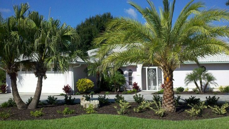 Small front yard landscaping ideas with palm trees on a for Front yard tree landscaping ideas