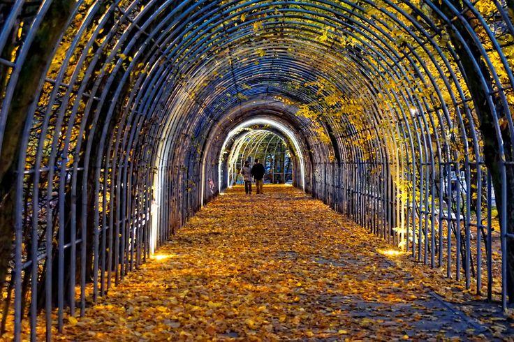 Bindaż, berso, chłodnik czy kolebka to element architektury ogrodowej znany już od czasów renesansu. W Kołobrzegu jest ozdobą Parku Koncertów Porannych przy ul. Towarowej. I jest to prawdziwa perełka, ponieważ bindaż jest niezwykle rzadkim obecnie elementem założeń parkowych w Polsce. Kołobrzeski bindaż został założony w połowie XIX wieku.  Photo by GB #architektura, #Kolobrzeg, #Kolberg #bindaż