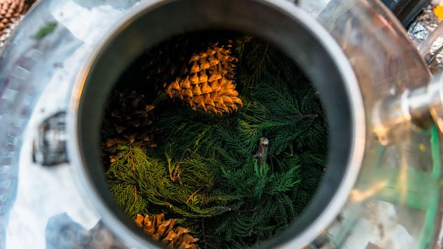 How Two West Coast Hikers Turned Brooklyn's Trees into a New Perfume