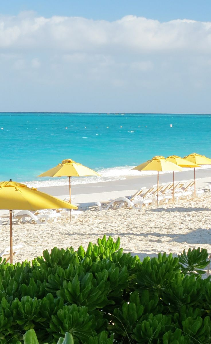 Providenciales's best snorkeling is easily accessible from The Alexandra's beaches.