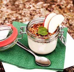 LE TOP 12 DES PROBIOTIQUES NATURELS yaourt fermente