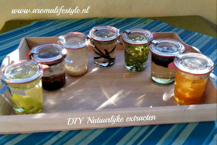 Natuurlijke extracten kan je zelf maken!