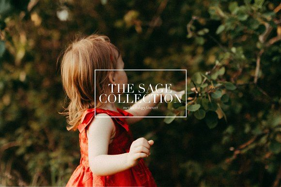 Sage, Moody Lightroom & ACR Presets by Methodology Photography on @creativemarket