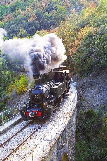 Le Train de l'Ardèche : un train touristique à vapeur : La ligne historique du Train de l'Ardèche va rouvrir pour l'été 2013. En parcourant cette voie creusée à flanc de montagne, à bord de trains à vapeur ou d'autorail touristiques, vous découvrirez des paysages exceptionnels, comme les spectaculaires Gorges du Doux.