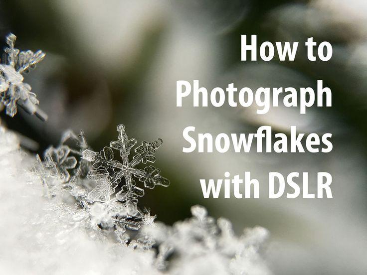 So fotografieren Sie Schneeflocken mit DSLR. Fangen Sie Winterschönheit über Makrolinse ein. C …   – Macro