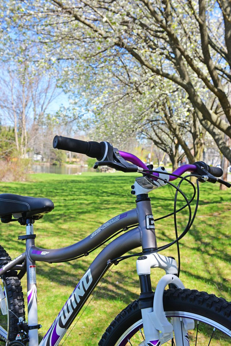 9 best spring into bike season images on Pinterest | Bicycles ...