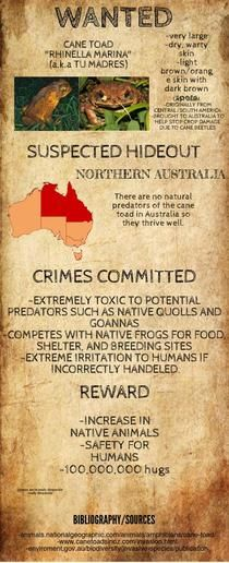 Invasive Species Wanted Poster | Piktochart Infographic Editor