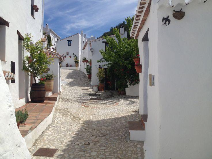 Zo Spaans is het binnenland van Andalusie maar toch ook zo dicht bij de kust. Kom eens mee op een van onze dagexcursies van Sunshine Tours. We maken er een feestelijke en onvergetelijke dag van.