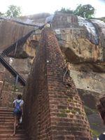 The Climb Sigiriya Sri Lanka