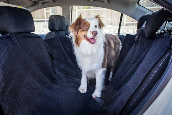 Pet Car Seat Covers by Ostrade Pet Care - Three-Layer of Waterproof Seat Covers Will Protect Your Car from Mud, Hair etc.- Non-Slip, Easy to Clean - Includes Bonus eBook on Hygienic Dog Care >>> Click image to review more details.
