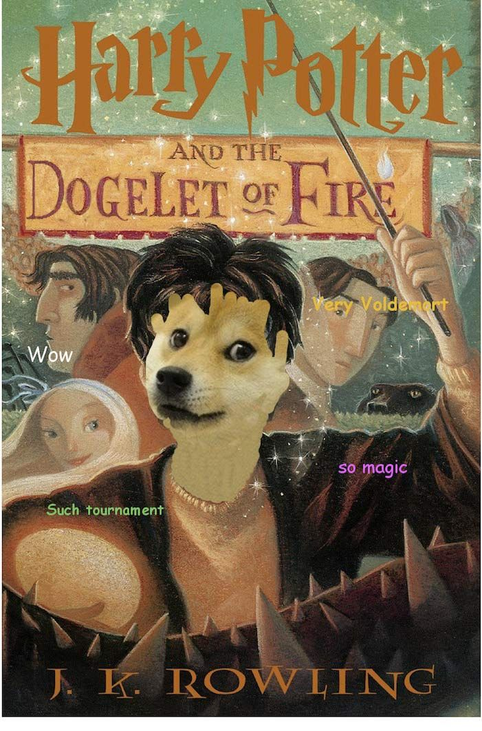 doge YA book covers