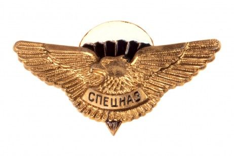 CHEST PIN BADGE SPETZNAZ OF THE AIRBORNE TROOPS. The pin badge is to…