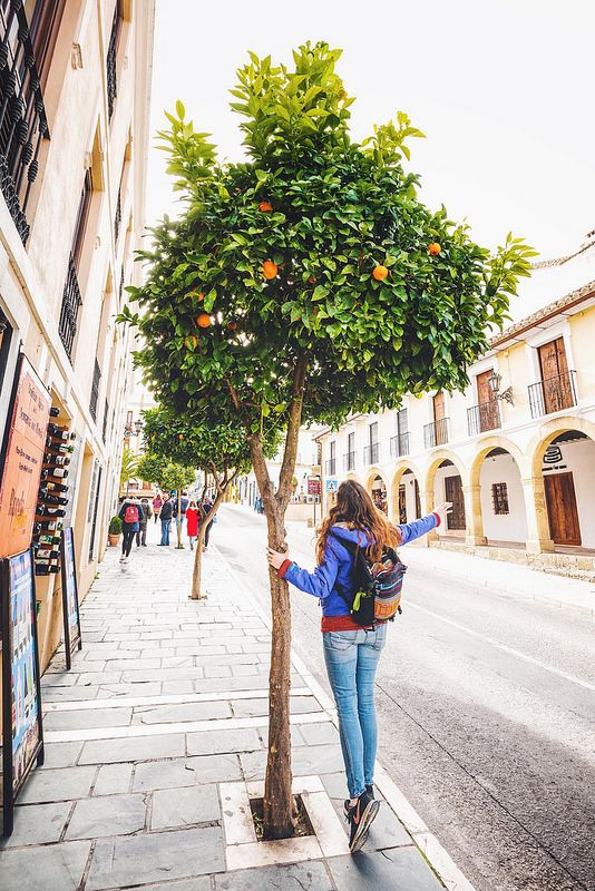 From Bullfights to Orange Trees: Drama & Romances in Ronda, Spain | Flora the Explorer