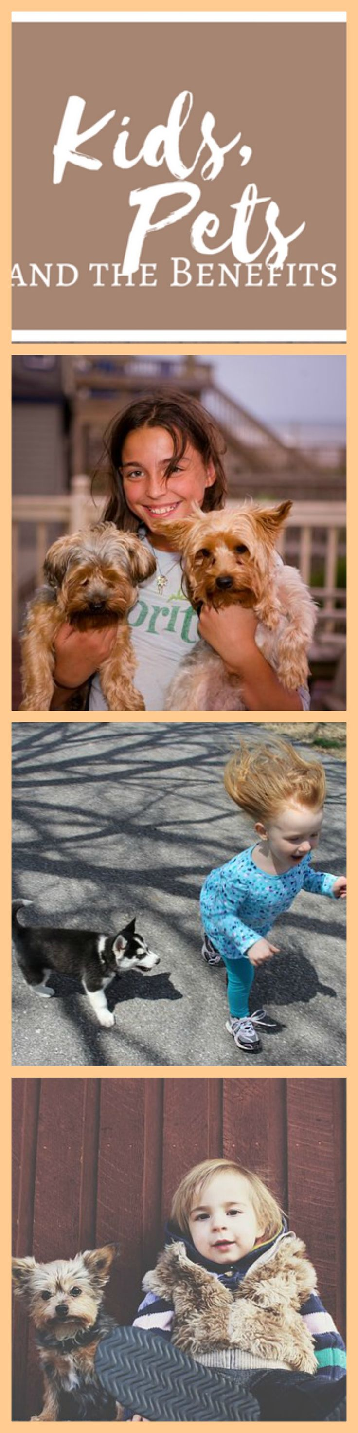 April 26th is National Kids and Pets Day.  It's a special day in which we recognize the benefits between the relationship of children and their pets.  If you ever grew up with a pet then you know how special that bond can be.  Dogs provide unconditional love and will never let a child down.  They will truly be a child's forever friend.