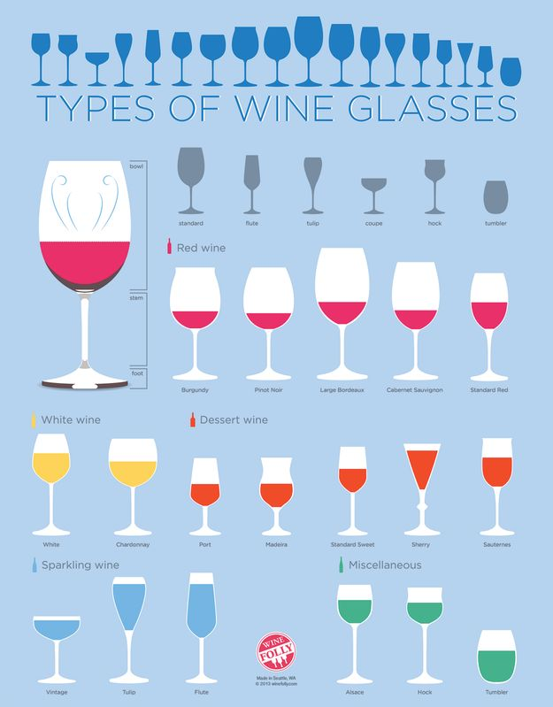 Every type of wine glass. | 17 Diagrams To Help You Get Turnt (Some of these infographics are really useful, some are kind of funny.)