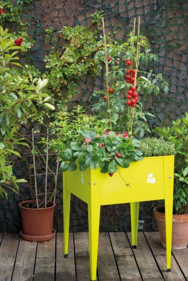 17 meilleures images propos de un jardin bio sur mon - Un jardin sur mon balcon ...