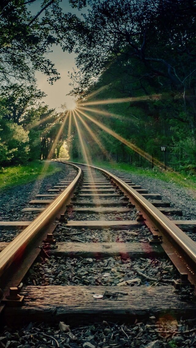 brown green . railway tracks . sun rays