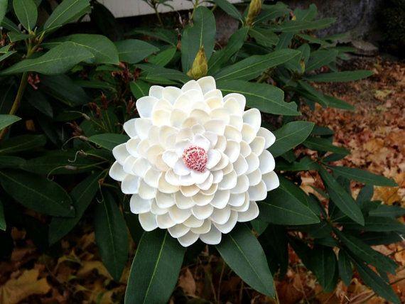 One of a Kind Seashell Flower Shadow Box White by SweetheartSeaArt, $40.00